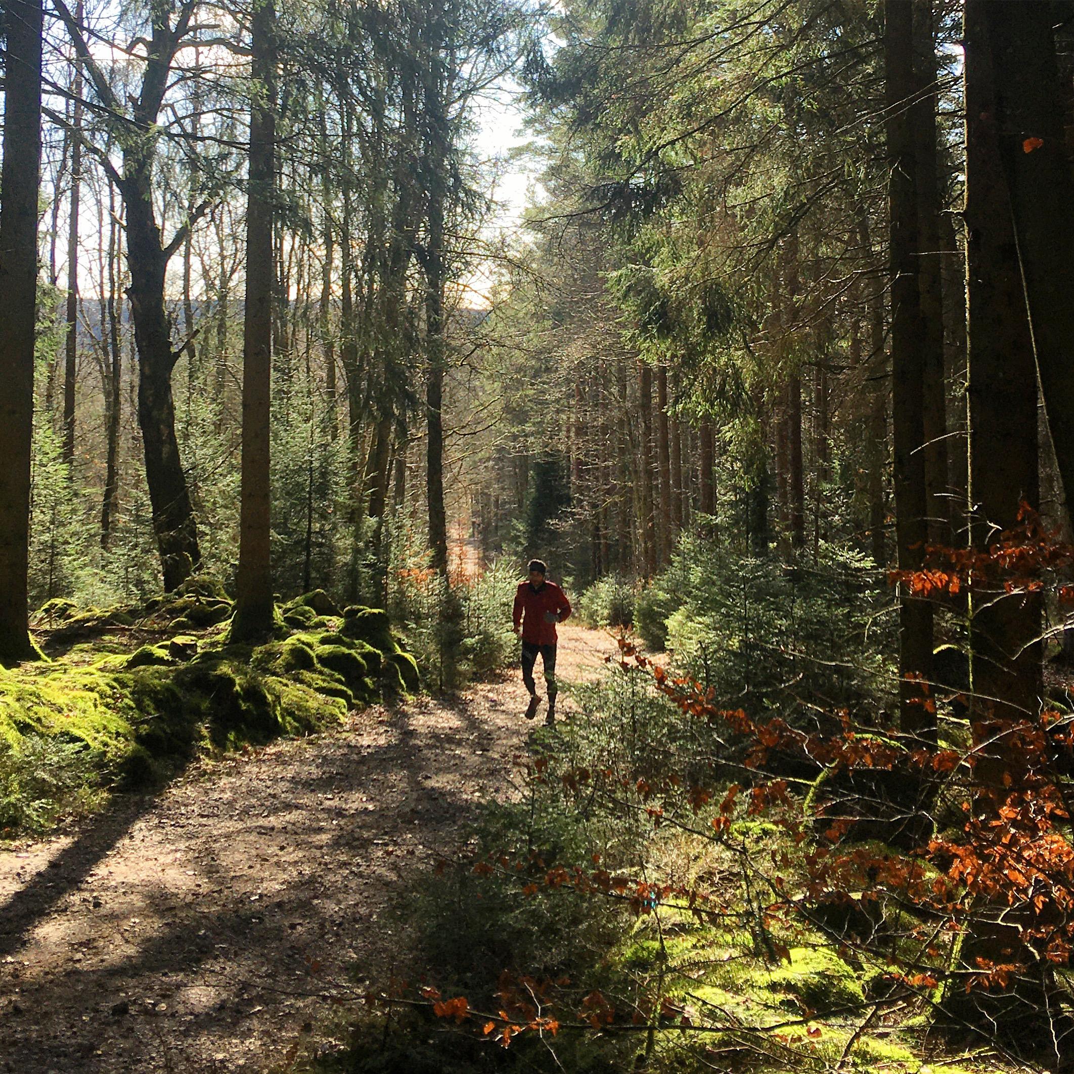 Wooded Run