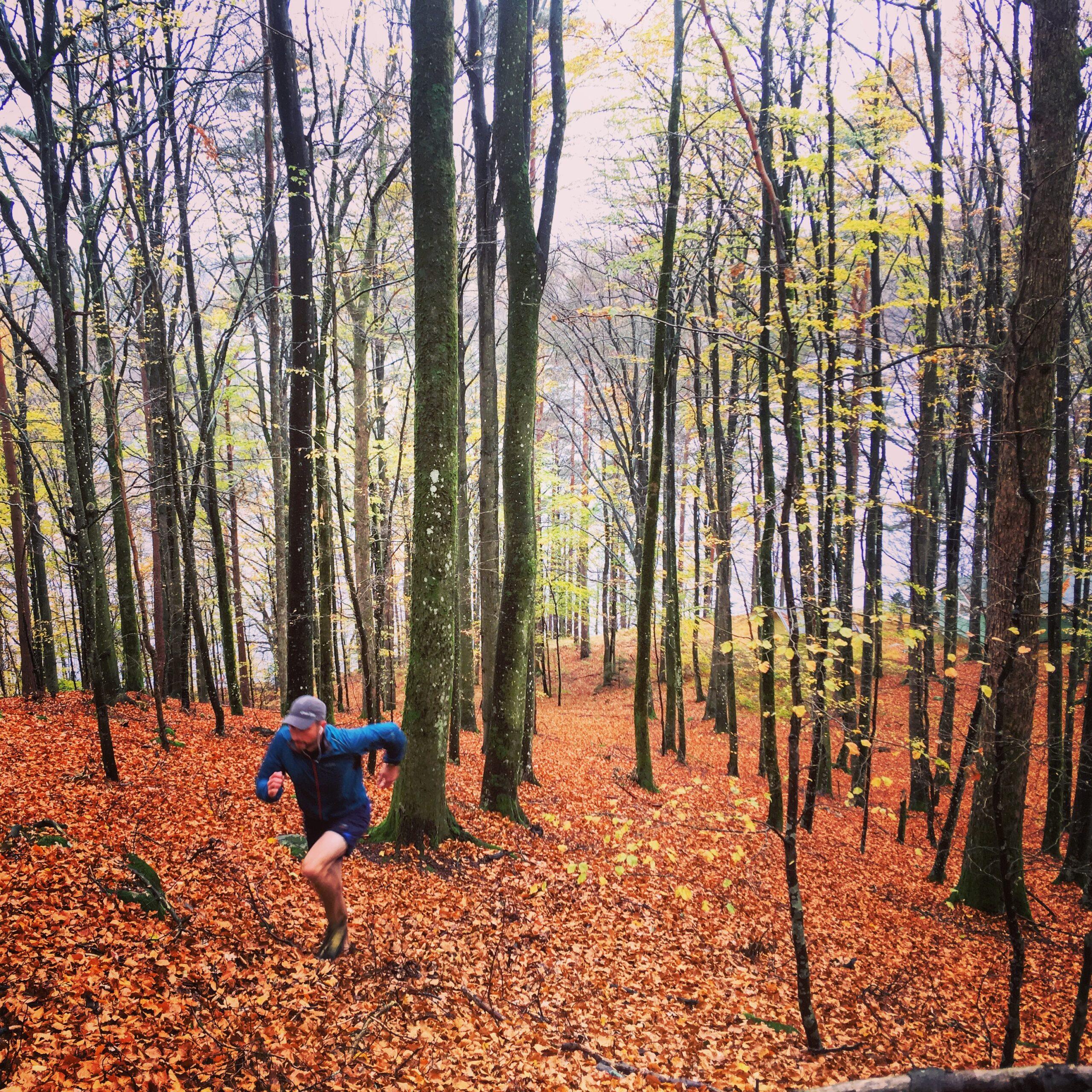 hill Autumn